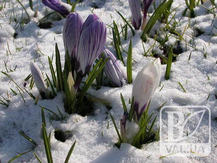 Сьогодні Зима з Весною зустрічається