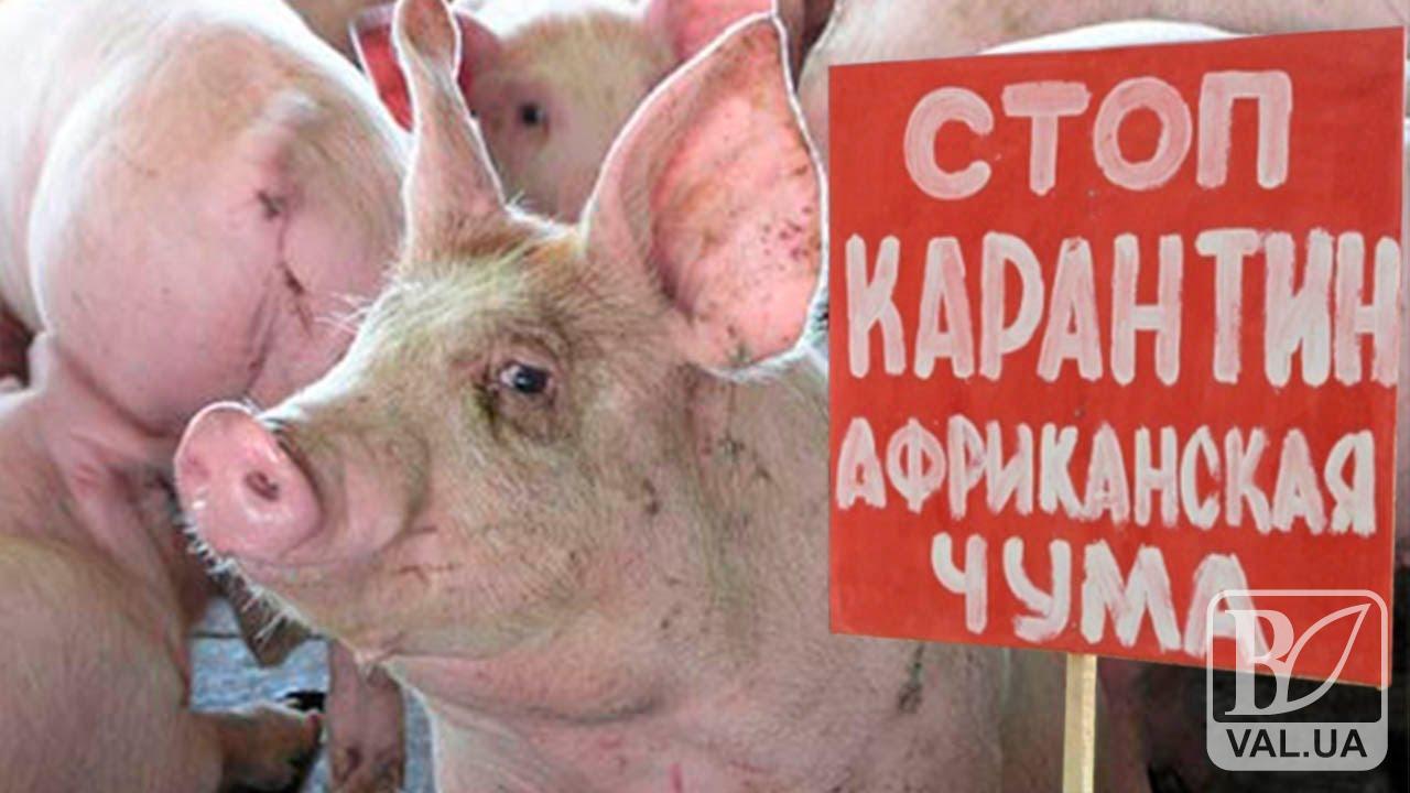 На Чернігівщині активізували профілактичні заходи через АЧС