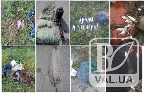 Через порушення правил рибальства в липні у Чернігові вилучено 95 кг риби