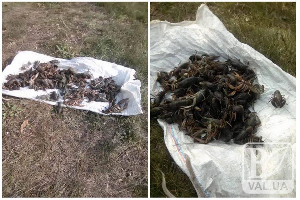 Очевидно рак таки свиснув: на Чернігівщині на «гарячому» спіймали сумчанина при незаконній риболовлі