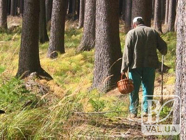 Вийшов з лісу за махоркою: на Чернігівщині знайшли зниклого 4 дні тому грибника