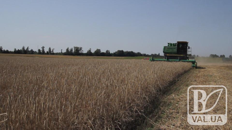 Влада планує продаж землі попри вимоги селян та рішення МВФ