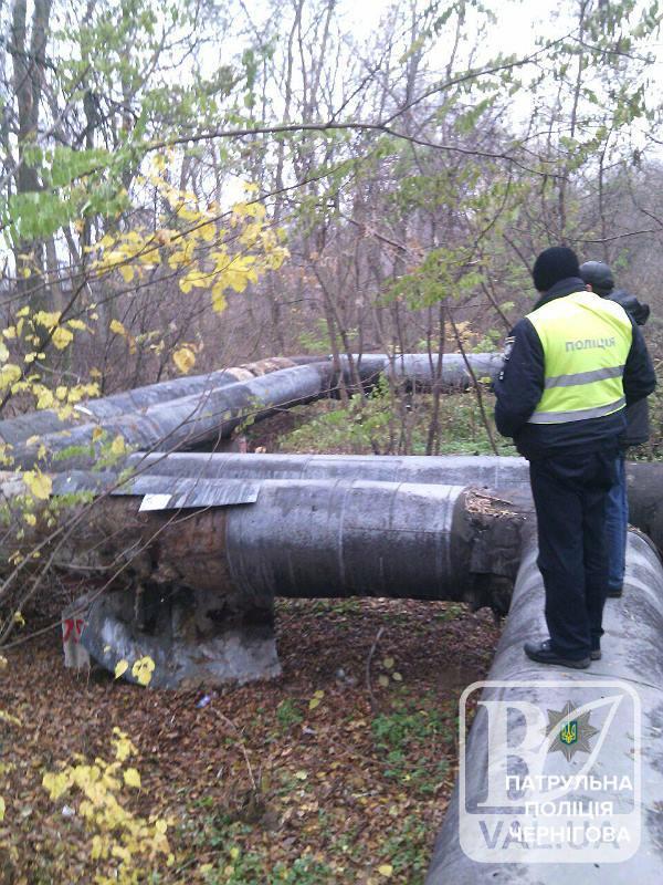 У Чернігові затримали двох «ділків», які постійно крали частини металевої ізоляції місцевої ТЕЦ