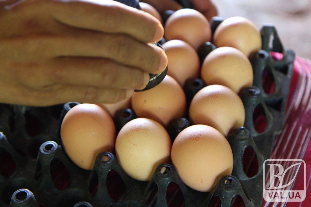 До Нового року ціни на яйця відчутно підскочать: прогнози експертів
