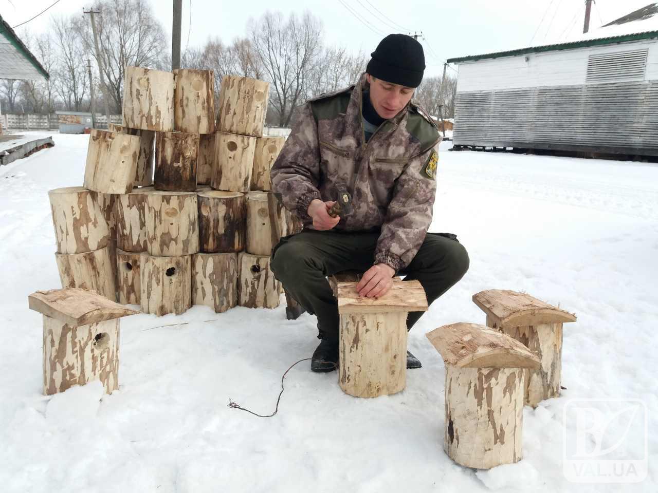 Задля принадження птахів лісівники Ніжина виготовили 500 шпаківень