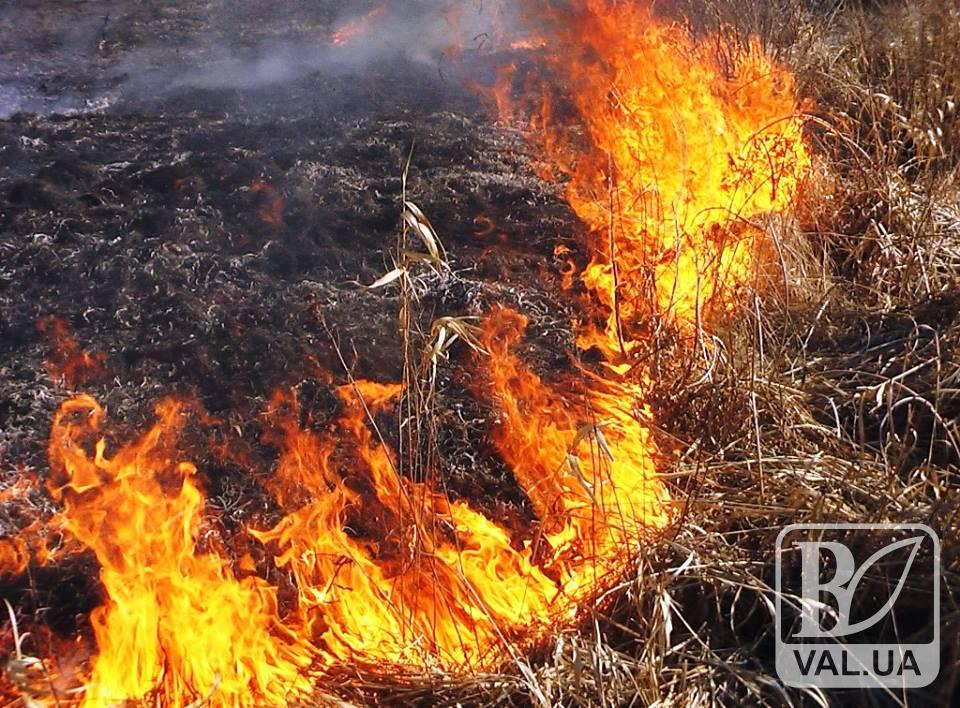 На Чернігівщині загинув чоловік під час гасіння пожежі