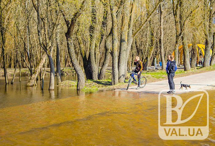 Хроніки водопілля: темп росту води в Десні уповільнився