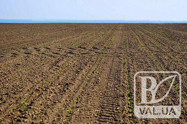 У Носівці повернули у власність громади близько 1,2 га земельних угідь