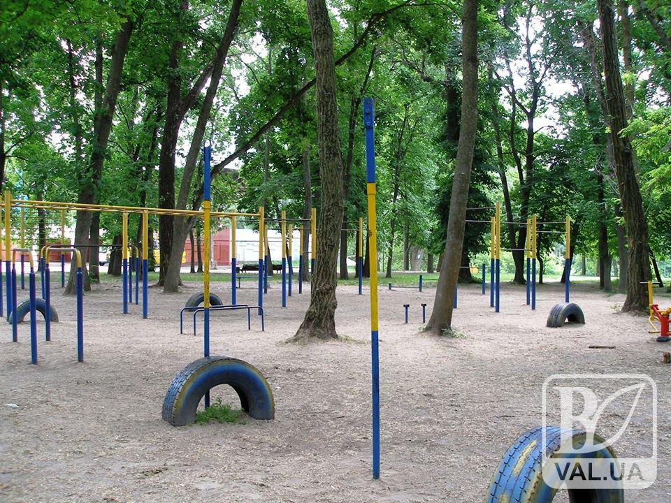 Із Парку культури та відпочинку викрали гімнастичні турніки. ФОТО