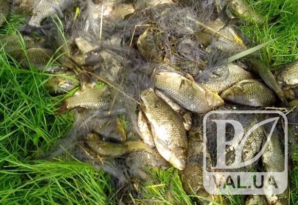 На Чернігівщині затримали чергових браконьєрів, які завдали збитків понад 11 тисяч гривень