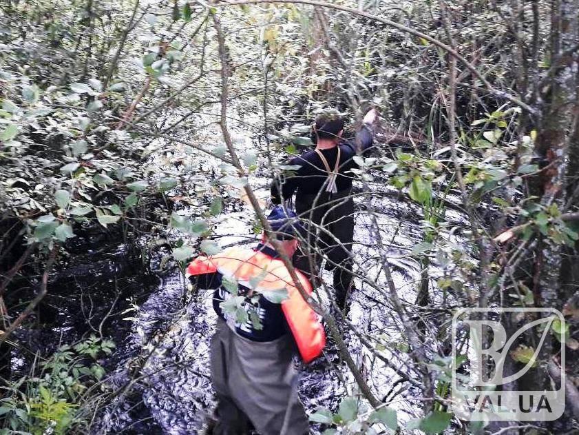 На Чернігівщині літня жінка застрягла у болоті