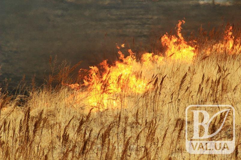 В Чернігівській області в найближчі дні очікується надзвичайна пожежна небезпека