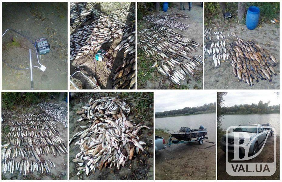 У Шестовиці браконьєри електровудкою «нарибалили» майже на сто тисяч гривень