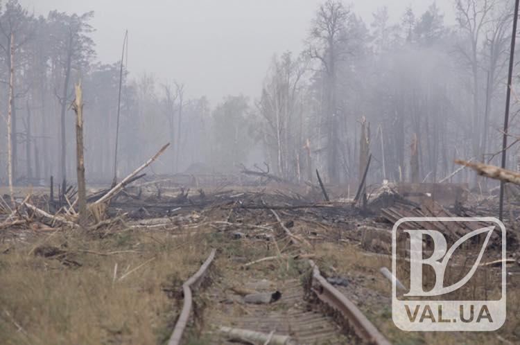 ДСНС планує очистити територію біля арсеналу до 15-го грудня