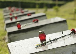 Вшанування жертв фашизму в урочищі Подусівка в Чернігові