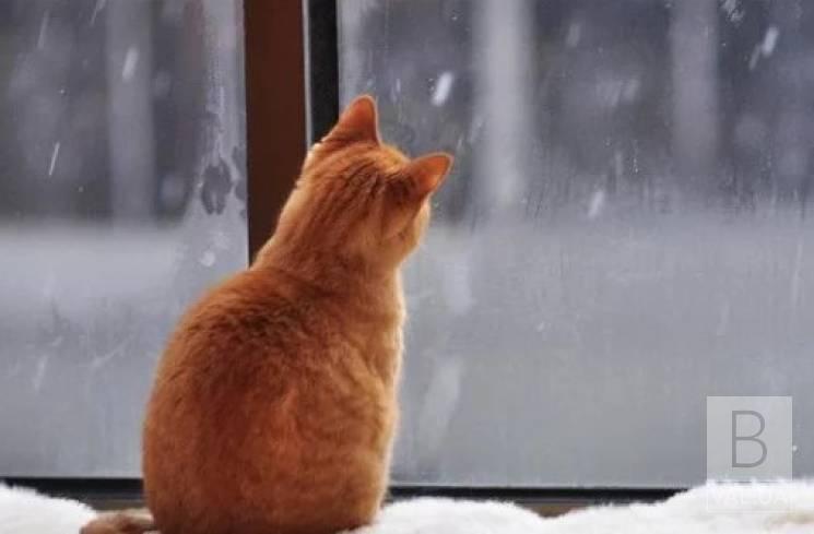 На українців очікує аномально теплий січень