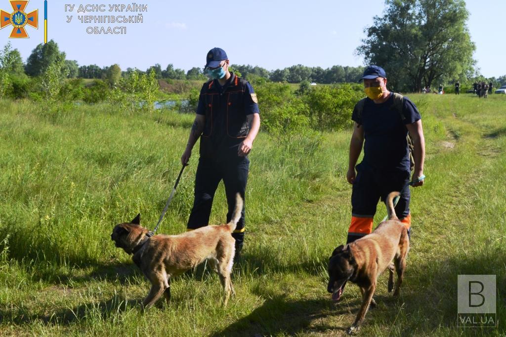 На Чернігівщині зайшли тіло пенсіонерки, яка пішла за грибами і зникла