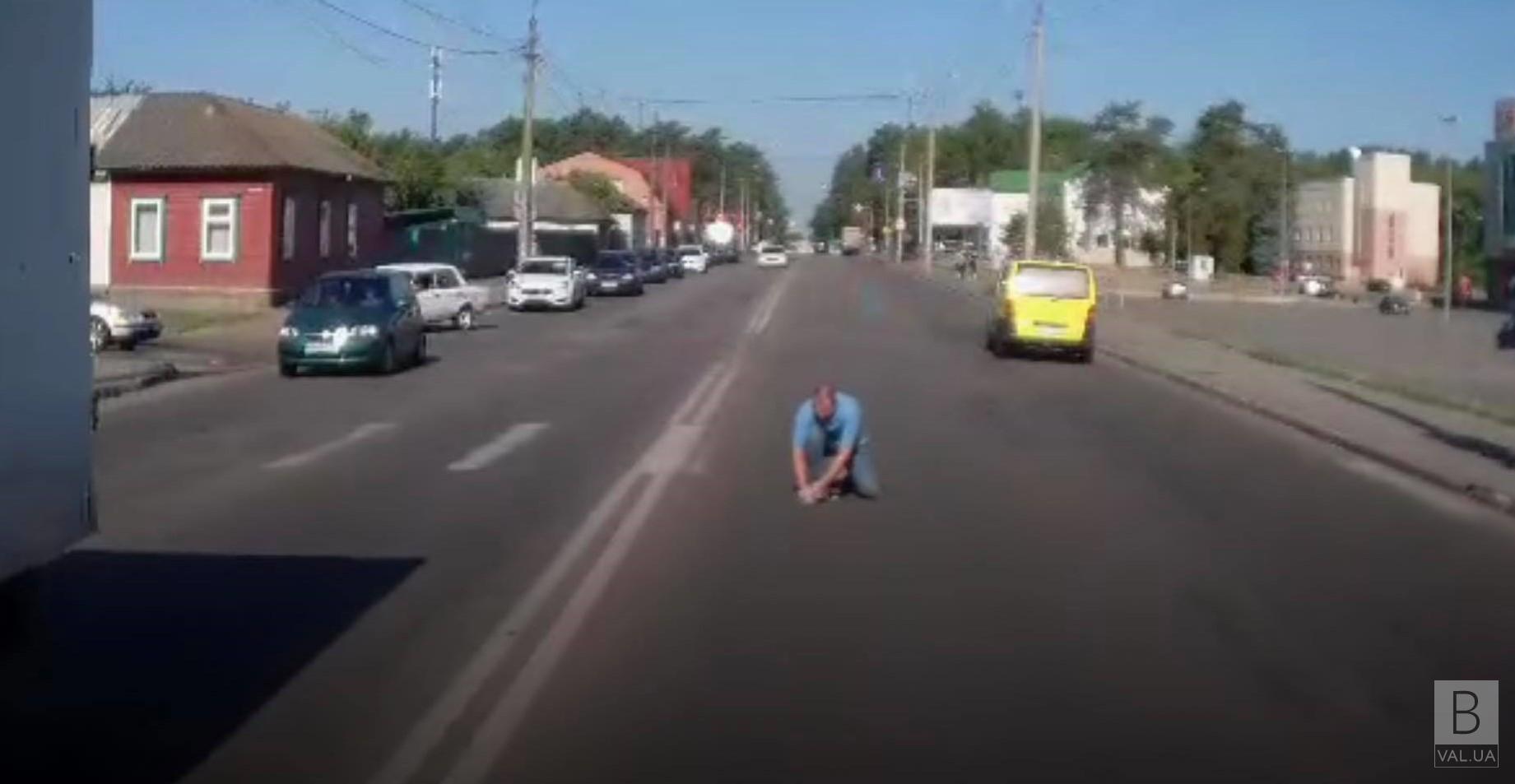 У Чернігові водій врятував кошеня на дорозі. ВІДЕОфакт