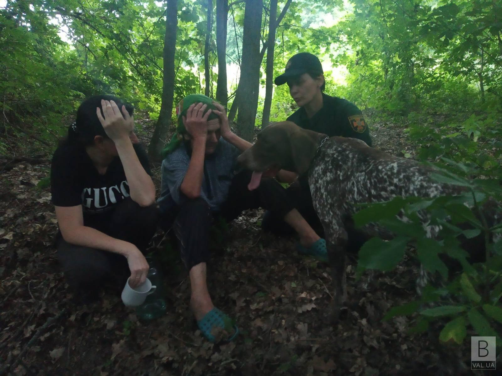 Провела у зарослях майже пів доби: на Чернігівщині кінологи знайшли літню жінку, яка заблукала у лісі