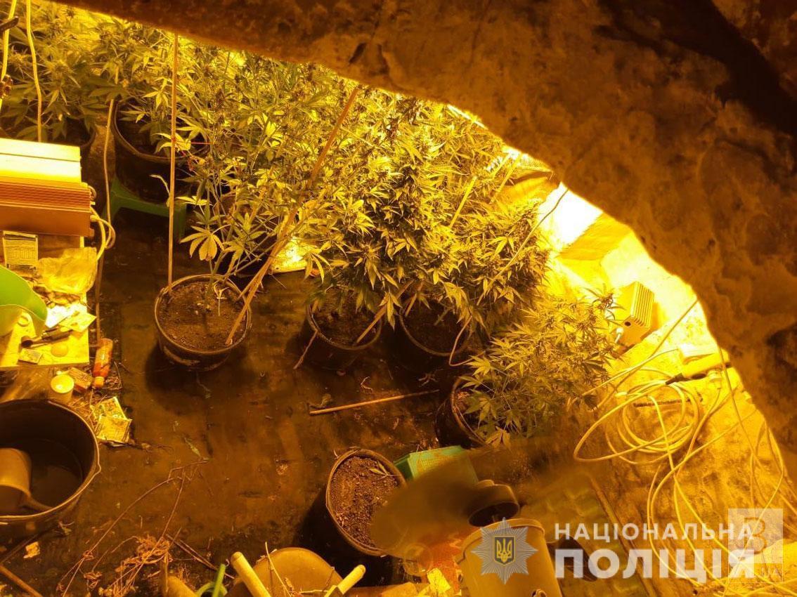 На Чернігівщині поліцейські викрили чоловіка, що вирощував наркотичні рослини у підземній оранжереї. ФОТО