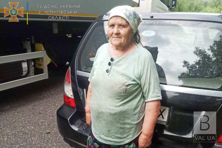 За 4 кілометри від рідного села: бабусю, що зникла в лісі на Чернігівщині, знайшли. ФОТО