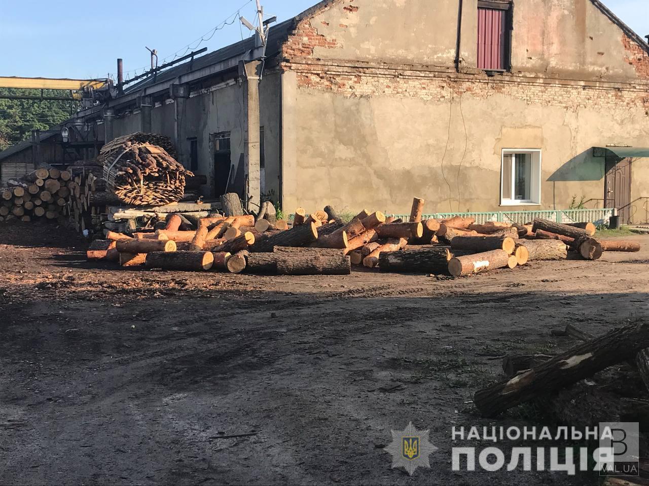 Супутниковий моніторинг допоміг: на Чернігівщині викрили групу «чорних» лісорубів. ФОТО