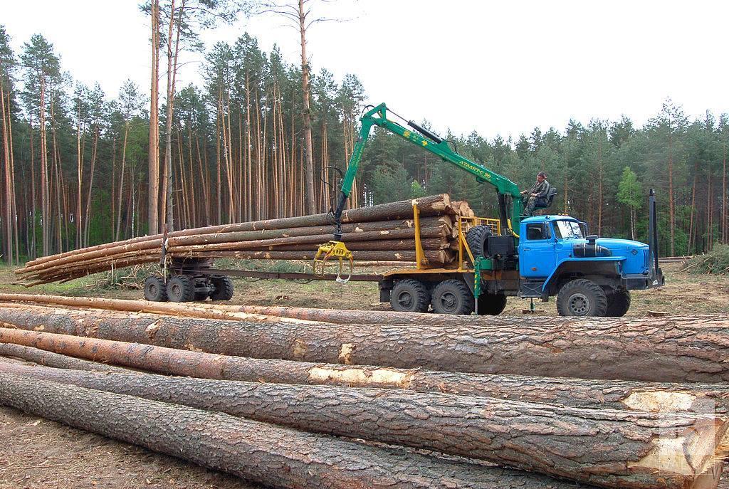 Після інвентаризації: обласна рада вирішила передати агролісгоспи громадам Чернігівщини