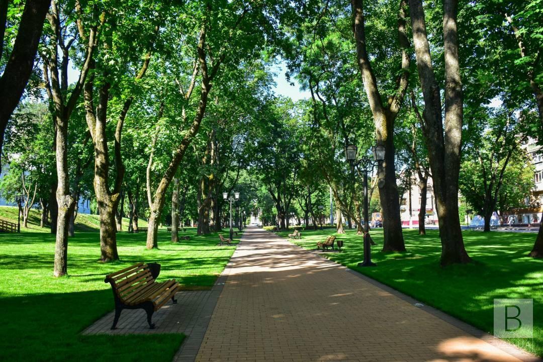 Реконструкція скверів – за понад 2 мільярди, саджанці – по 10-30 тисяч: у Чернігові презентували програму озеленення