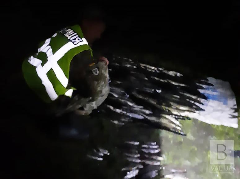 На Чернігівщині викрили «електровудочників», які наловили 49 кг риби на 53 тисячі гривень. ФОТО