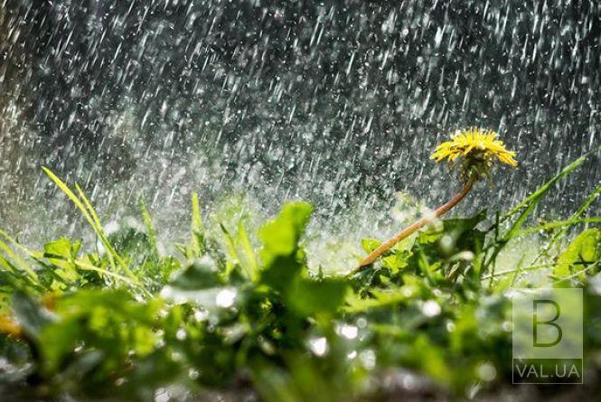 Завтра на Чернігівщині очікуються грози та місцями значні дощі
