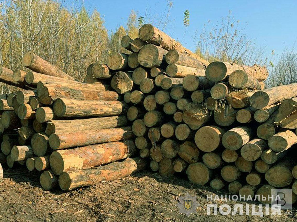 У Мезинському парку «чорний лісоруб» нарубав дерев на понад 340 тисяч гривень. ФОТО