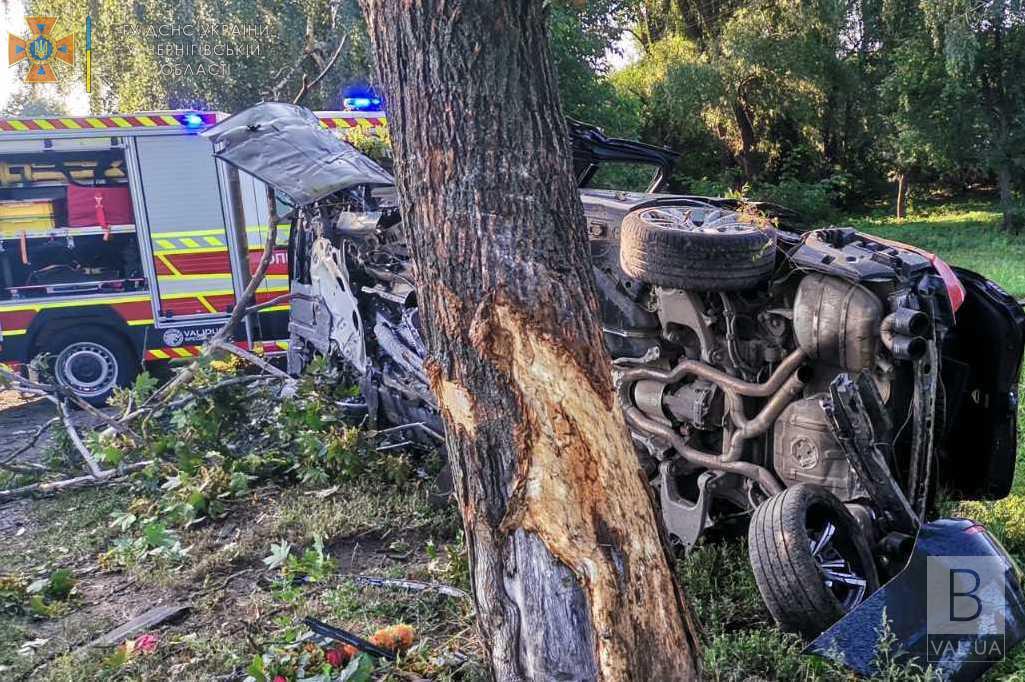 На Чернігівщині водій «BMW» влетів у дерево. Його тіло дістали рятувальники. ФОТО