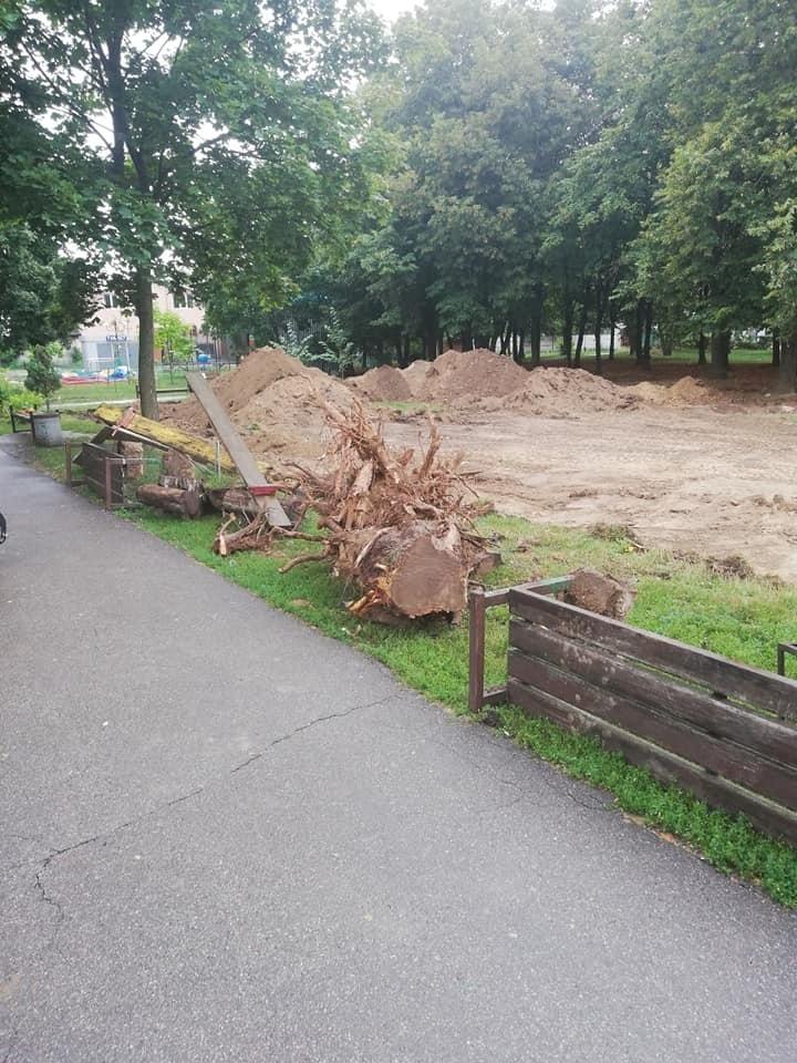 У Березовому гаю стартувало будівництво скейт-парку