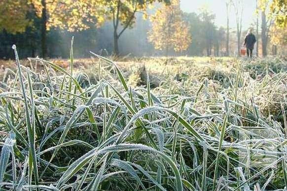 Синоптик розповіла, коли очікувати перші заморозки на ґрунті