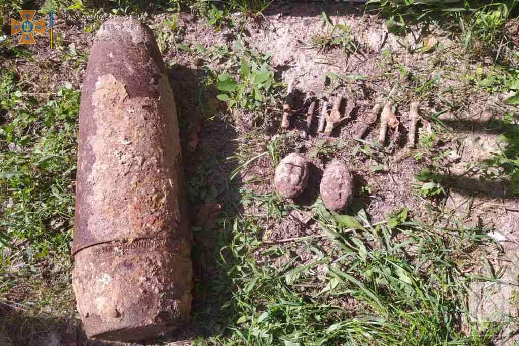 На Чернігівщині «копачі» під час пошуку артефактів натрапили на вибухонебезпечний предмет