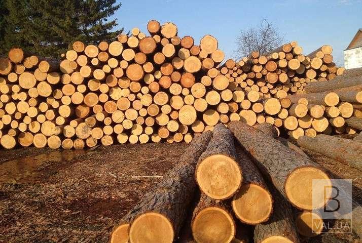 На Чернігівщині хочуть запровадити онлайн-аукціони з продажу лісу