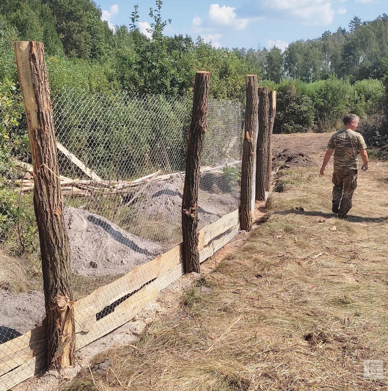 На Чернігівщині в одному з лісництв збудували вольєр для підсвинків