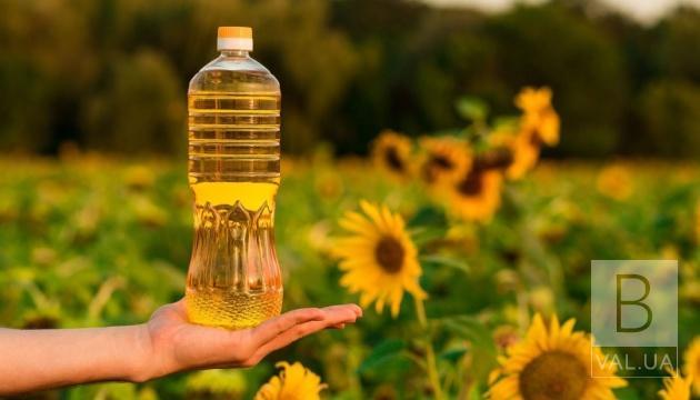 Соняшники в дефіциті: чи стане в Україні олія дешевшою ніж 60 грн за літр