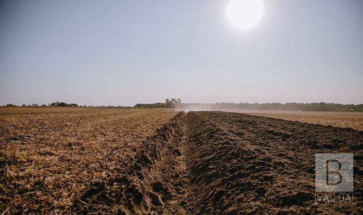 Не може зайти техніка: на Чернігівщині сівба озимих затримується через перезволоженість ґрунту