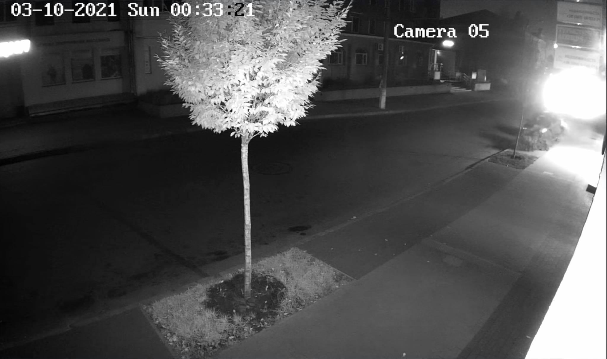 Водія, що збив дерево у центрі Чернігова, розшукує Муніципарна варта
