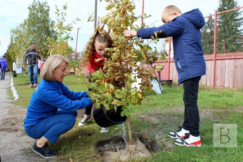 На Чернігівщині висадили вже четверту Олімпійську алею
