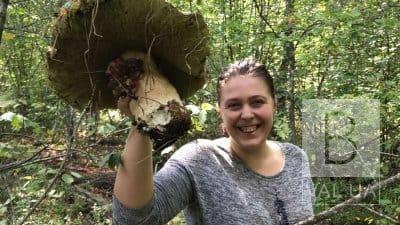 У лісі біля Голубих озер жінка знайшла білого гриба-гіганта