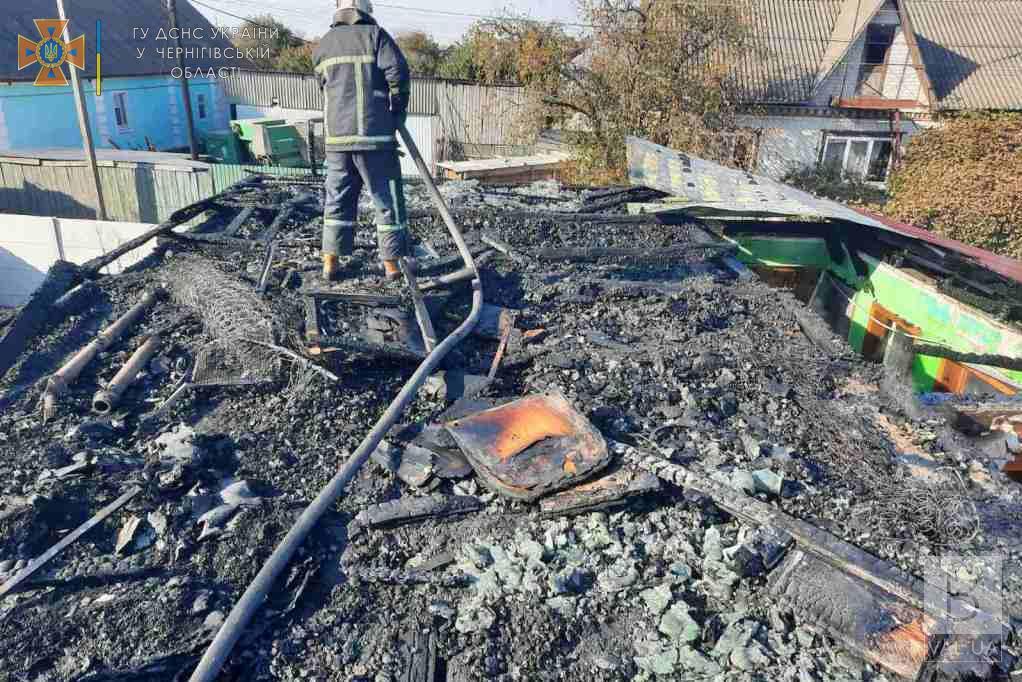 Вогнеборці Чернігівщини за добу приборкали 5 пожеж. ФОТО