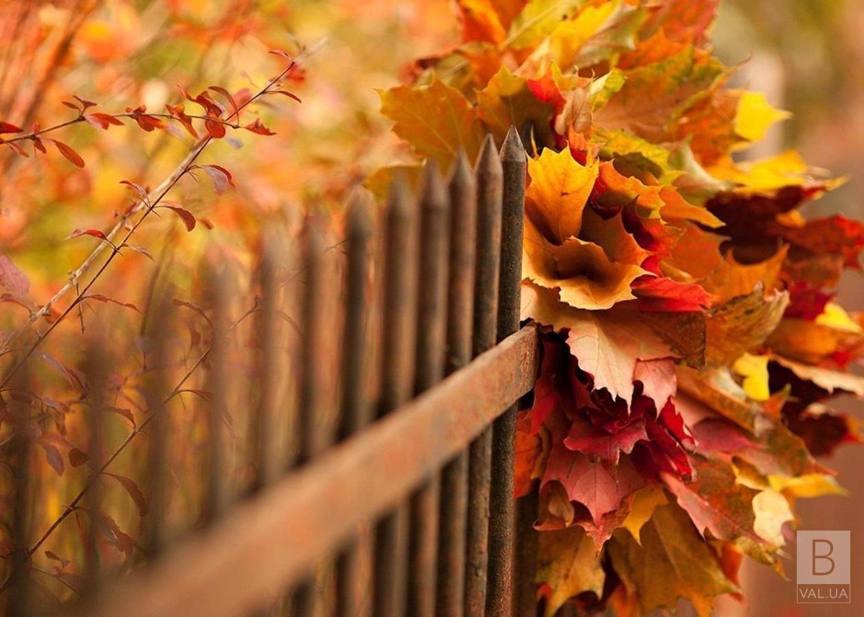 Яке сьогодні свято: традиції та прикмети