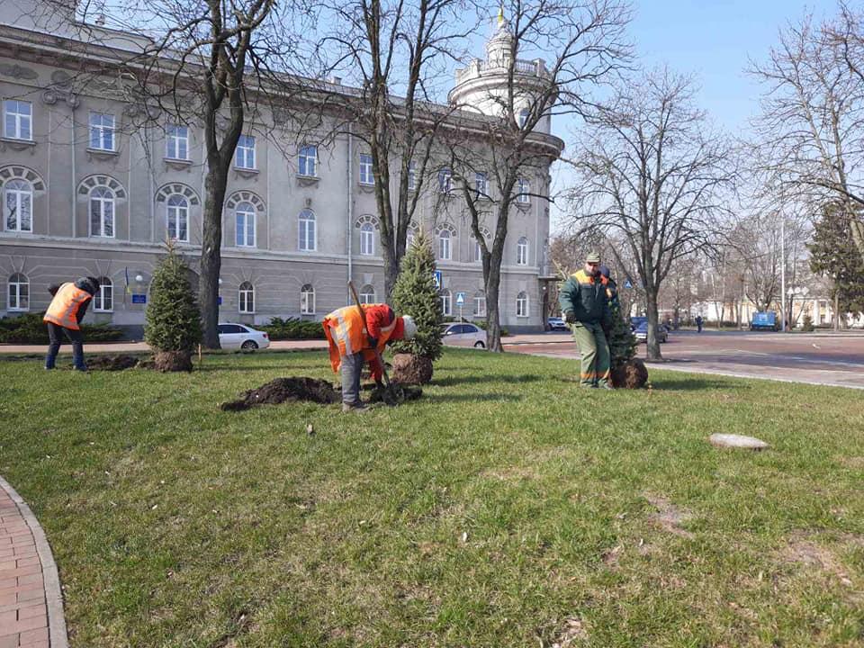 Чернігівські комунальники наводять лад на зелених зонах. ФОТО