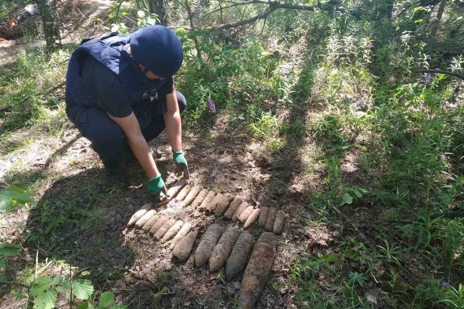 На Чернігівщині піротехніки знищили 71 вибухонебезпечний предмет. ФОТО