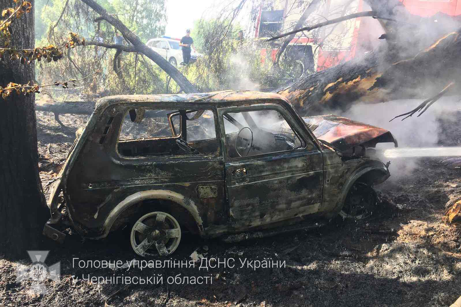 Злетів у кювет та в'їхав у дерево: на Чернігівщині через ДТП загорілась автівка. ФОТО