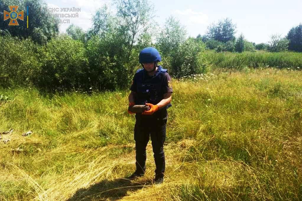 Знайшли на власній присадибній ділянці: жителі Олешні натрапили на артилерійські снаряди. ФОТО