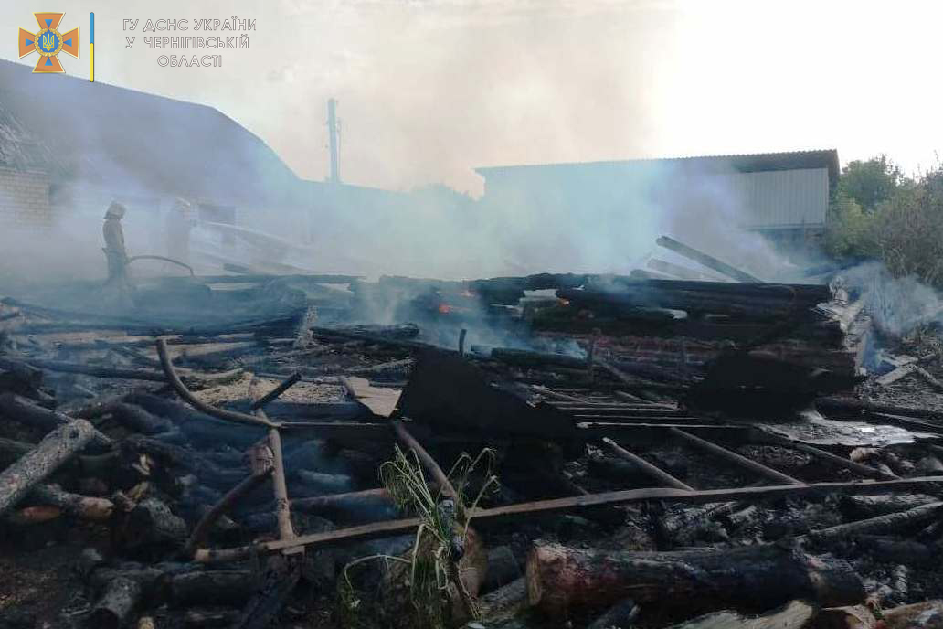 На Чернігівщині через дитячі пустощі виникла масштабна пожежа. ФОТО