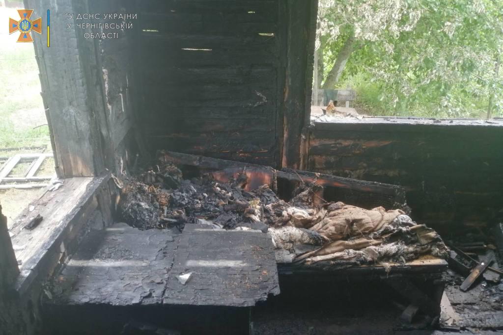 У Ріпках під час пожежі загинули двоє людей. ФОТО